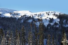 mountains landscape in winter time. colorado winter high country scenery - stock photo