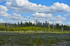 wyoming scenery. state of wyoming beautiful summer landscape. north-west wyom - stock photo