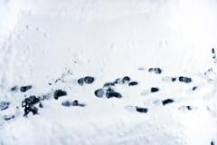 footprints on snow background. shoe marks. winter theme - stock photo
