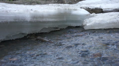 Ice melts and the water flowing brook. Spring. Siberia Stock Footage