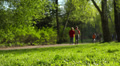 Sunny day in park, people, children walking, playing.  Dolly. Footage