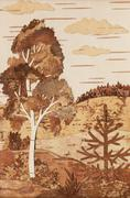 Application: landscape with a birch and a fur-tree - stock illustration