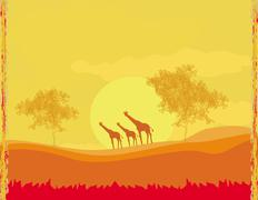 grunge background with giraffe silhouette on sunset african fauna and flora - stock illustration