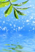 Green leaf on abstract snowflake background reflected in rendered water Stock Photos