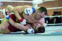 volga federal district championship in mixed martial arts... ... - stock photo