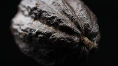 Food Chocolatier Cocoa bean fruit Chocolate Stock Photos