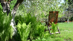 Empty wooden chair fern plant leaves and blooming apple tree - stock footage