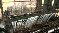 Sugarcane Processing Stock Footage