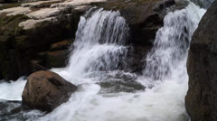 forest waterfall - stock footage