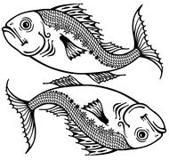 Stock Illustration of pisces black and white