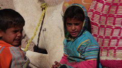 Children near a camel ina bedouin camp, Hurghada, Egypt Stock Footage