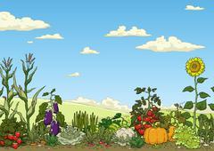 Vegetable garden bed Stock Illustration