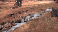 Mid shot of an early spring creek Stock Footage