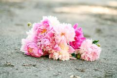Bouquet of beautiful peonies on a road - stock photo