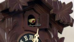 Cuckoo clock cuckoos 12 times 11345 Stock Footage