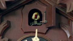 Cuckoo clock cuckoos one time 11347 Stock Footage