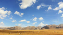 Pasture in Tibetan Plateau,China Stock Footage