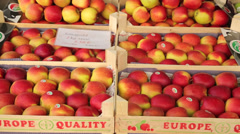 apples fruit for sale at grote markt, market square, mechelen, belgium - stock footage