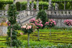 kitchen garden in  chateau de villandry. loire valley, france - stock photo