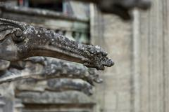 Gargoyle on gothic cathedral of saint gatien in tours, loire valley  france Stock Photos