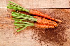 Fresh carrots bunch Stock Photos
