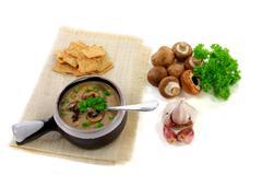 gourmet mushrooms cream soup - stock photo
