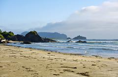 Stock Photo of american northwest pacific shore - washington state usa. travel photo collect