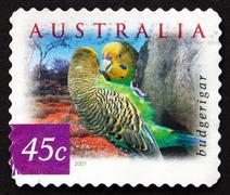 Postage stamp Australia 2001 Budgerigar, Common Pet Parakeet, Pa Stock Photos