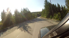 Driving on a highway along the forest Stock Footage