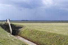 Fence in a meadow on Texel. Stock Photos