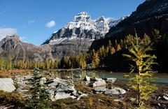 mount huber and opabin plateau, yoho national park, canada - stock photo