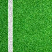 Stock Photo of white stripe on the green soccer field