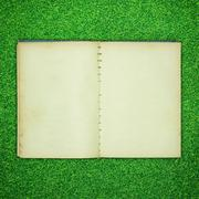 old book open on green grass background - stock photo