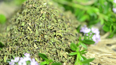 Winter savory (loopable) Stock Footage