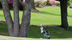 Golf bag on course Stock Footage