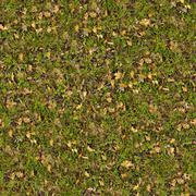 Dry Leaves on Green Grass. Seamless Texture. Stock Photos