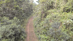 Flying over a track surrounded by primary tropical rainforest  Stock Footage