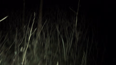 POV shot walking/running through dark spooky forest at night Stock Footage