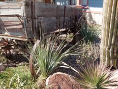 Vanha katettu vaunu on turistikohteessa, death valley national park, kalifornia Kuvituskuvat