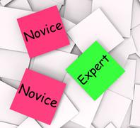 Novice expert post-it notes mean amateur or skilled Stock Illustration