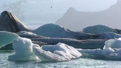 Lonely birds fly by over icebergs on lake Stock Footage