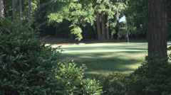 Stock Video Footage of Golf Course Green