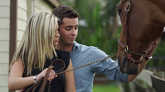 Couple taking care of a horse Stock Footage