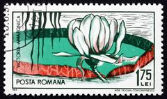 Postage stamp Romania 1965 Victoria Amazonica, Flowering Plant Stock Photos
