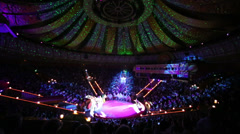 Camels performance at arena of Great Moscow State Circus hall Stock Footage
