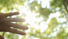 Stock Video Footage of Sun's Rays Through Fingers Palm - Tracking shot