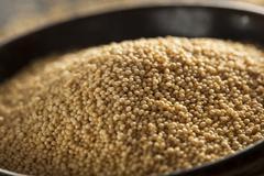 raw organic amaranth grain - stock photo