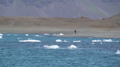 Far away girl walking on moraine sediments behind icebergs on the lake Stock Footage