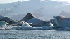 Pan on icebergs at sunset sith birds flying around Stock Footage