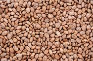 Stock Photo of pinto beans background